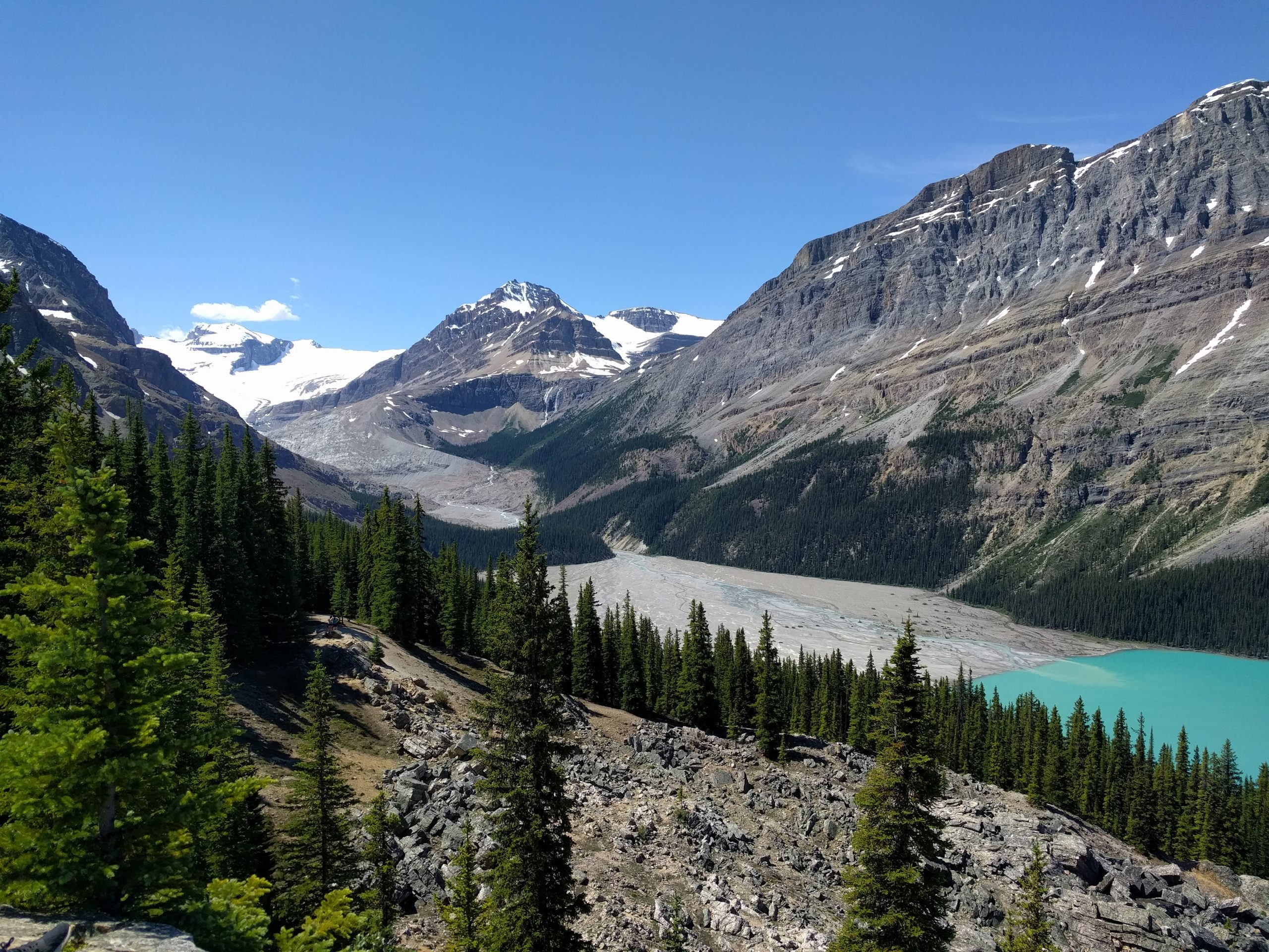 Peyto Lake Canada: The Lake is fed by the Peyto creek which drains water from the Peyto Glacier (on the left)