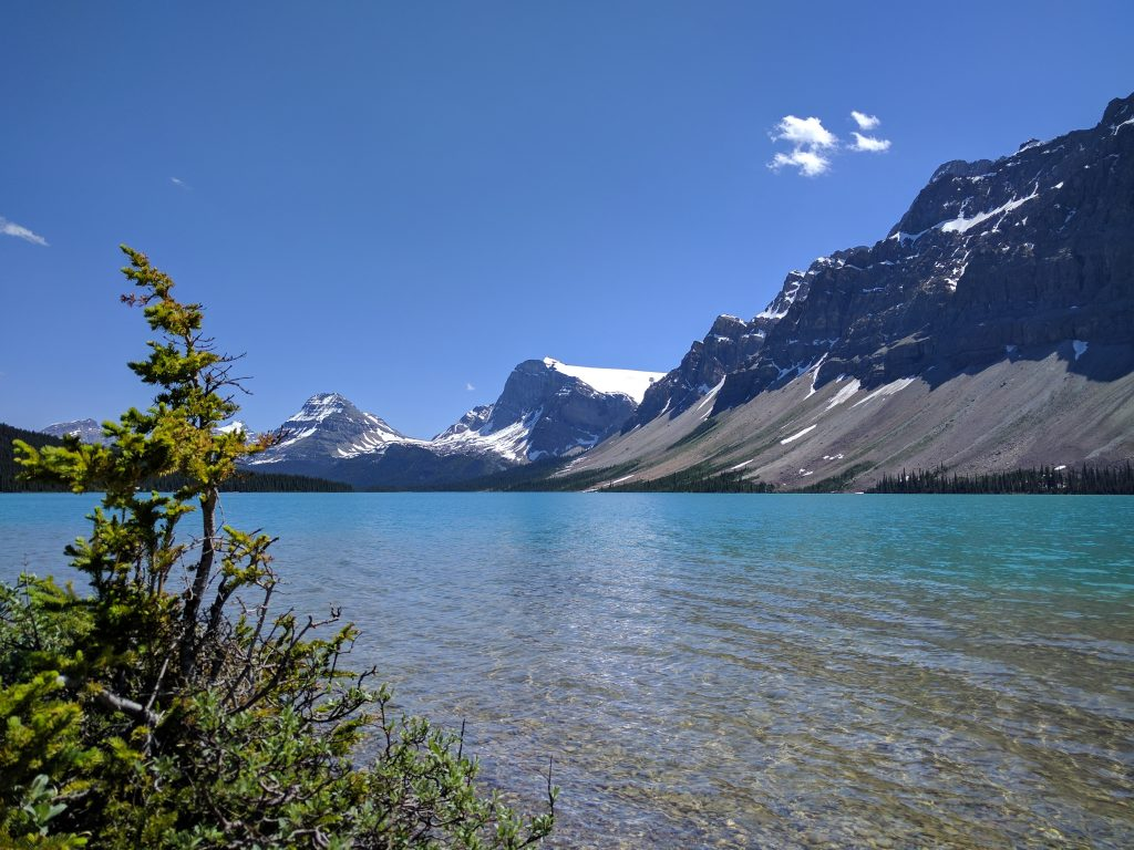 Bow Lake on a sunny day in July. Banff National Park