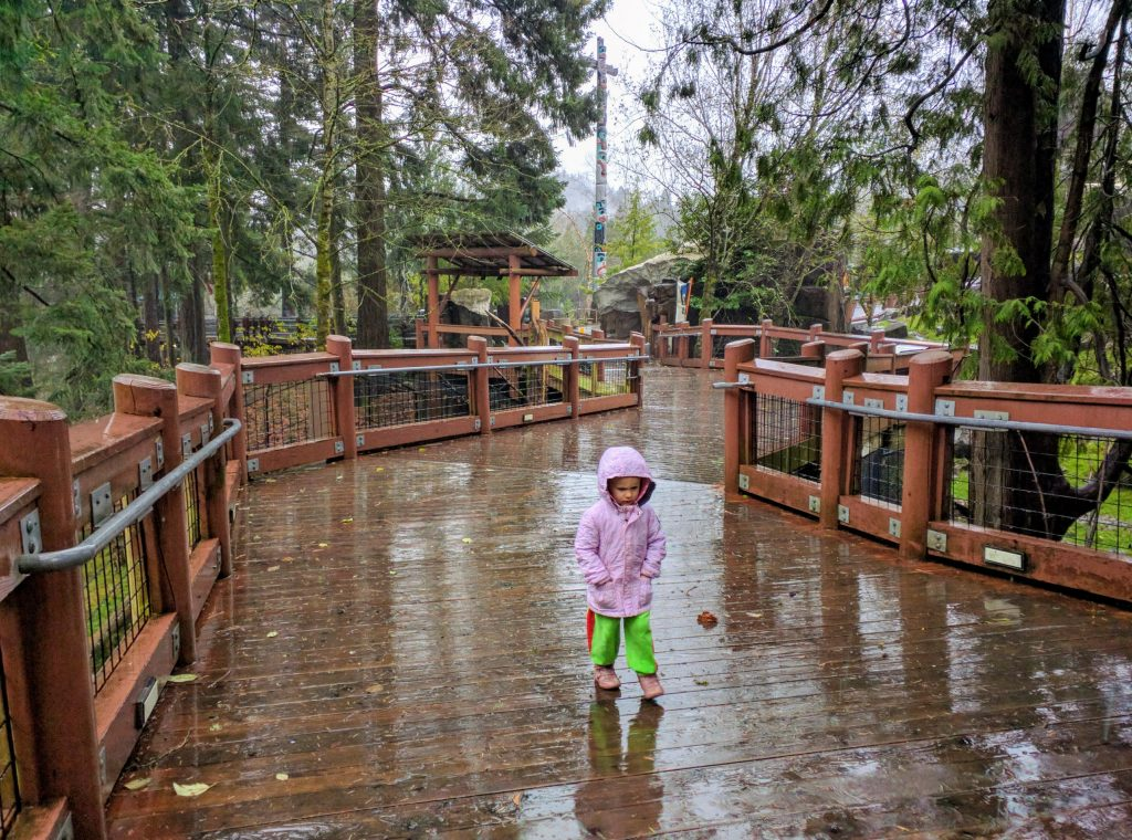 Rainy day at Portland Zoo