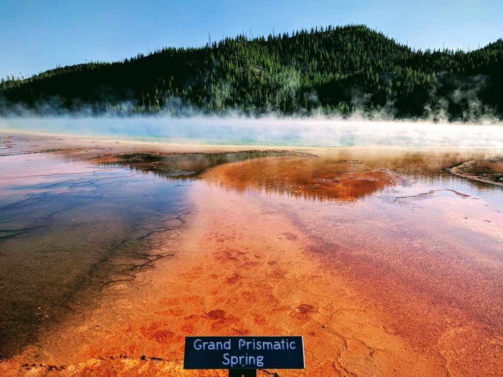 One of the most famous places in YNP: Grand Prismatic Spring